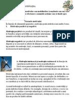Teoriile Motivației PDF 11