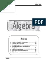 Algebra 1er Año