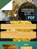 Concentrado Gravimétrico de Oro Grueso