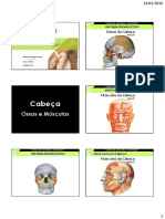 Anatomia-Palpatória.pdf