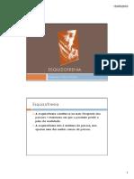 Neuroquímica esquizofrenia