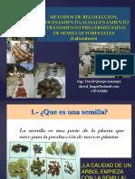METODOS DE RECOLECCION, PROCESAMIENTO,ALMACENAMIENTO Y TRATAMIENTO PREGERMINATIVO DE SEMILLAS FORESTALES (Laboratorio)