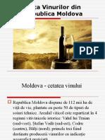 Piata Vinului În RM