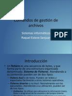 Comandos de gestión de archivos.pdf