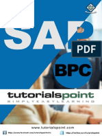 sap_bpc_tutorial.pdf
