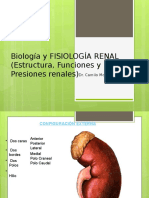 Clase Fisiologia Renal