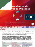 Ciclos de control PDCA Y SDCA.pptx