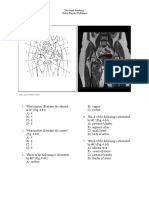 pelvis pp revised 2015