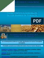 1. Característica Generales de Los Granos de Cereales