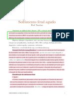 8 Obstetrícia SFA