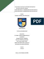Monografia de Tutela de Derecho Final