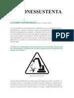 ACCIONESSUSTENTABLES.docx