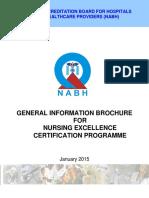 Information Broucher Nursing Excellence