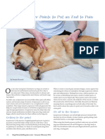 7-Acupressure-Points-to-Put-an-End-to-Pain-Dogs-Naturally-January-2014.pdf