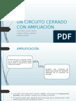 Un Circuito Cerrado Con Amplificación-TEORIA DE SISTEMAS