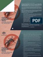 Flyer Malaria