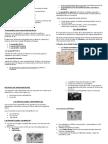 APUNTES UNIDAD 1 Y 2.docx