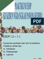 Materi Assist ESDP