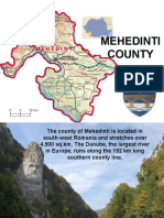 Mehedinti County