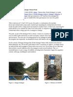 Taman Alam Report