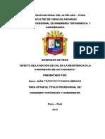 documents.tips_borrador-de-tesis-concreto.docx