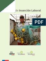 Plan de Insercion Laboral FOSIS