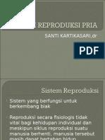 5. Sistem Reproduksi Pria