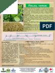 Frijol_Verde.pdf