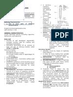 Phylum Annelida 3rd Le 2 (1)