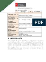 Propuesta de Informe Diagnostico_G 5