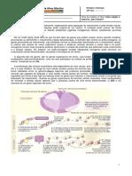 Ficha - Ciclo Celular e Tumores