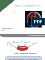 Sistema Neuro Hormonal (1)