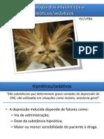 Ansiolíticos Hipnoticos e Sedativos.pdf