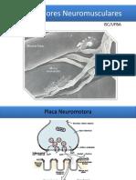 Bloqueadores Neuromusculares.pdf