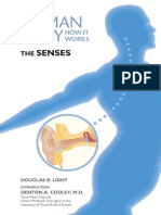 [Douglas B. Light and Denton a., M.D. Cooley] the Senses (the Human Body_How It Works)