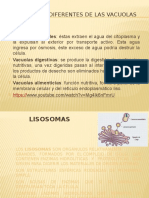 Celula eucariota animal 2.pptx
