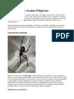 Mordedura de Arañas Peligrosas