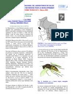 Mansonelosis-especie de Microfalarias