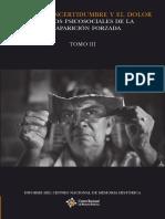 Tomo-III Informe Desaparicion Forzada