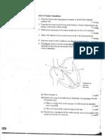 U6 Circulatory System Questions