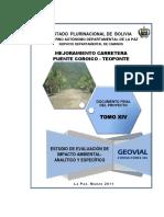 Documento Eeia3 (Pte. Coroico - Teoponte)