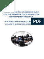 concrecion-campos.pdf