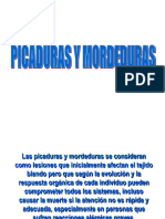 Picaduras y Mordeduras CEFOCALE(PDF)