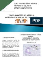 Brochure Lote San Isidro PDF