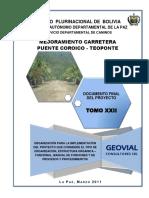 Organización Para La Implementación Del Proyecto (Pte. Coroico-Teoponte)