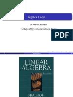 Algebra Vector Es