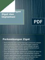 Zigot Dan Implantasi