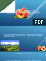 GRUPO 4, Presentacion Planta Melocoton Enlatado