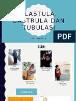 Blastula, Gastrula Dan Tubulasi