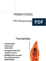 pm2 TREMATODES.ppt